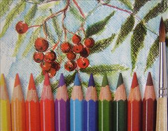 Pastelky Mondeluz Akvarelove Rozmyvatelne Kusove Umelecke Pastelky